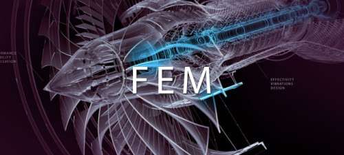 fem03